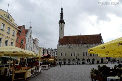 BałtF232-Tallinn-Rynek