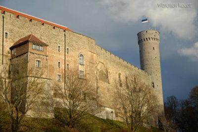BałtF323-Tallinn-Zamek zdołu