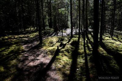 BałtG045-Park Lahemaa-Onadu