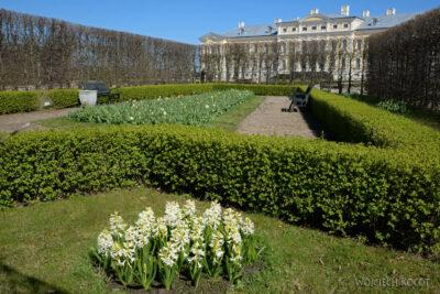 BałtJ074-Rundales-Pałac iokolica