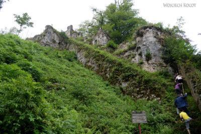 Irnd064-Na zamku Rudchan