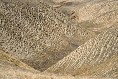 Irnf042-Przez Turkmeński Step