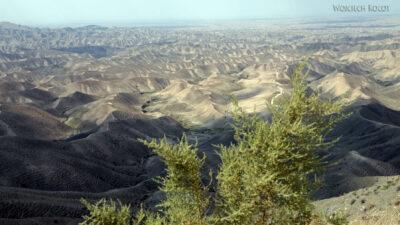 Irnf057-Przez Turkmeński Step