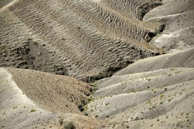 Irnf062-Przez Turkmeński Step
