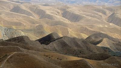 Irnf079-Przez Turkmeński Step