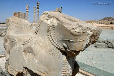 Irnp010-Persepolis