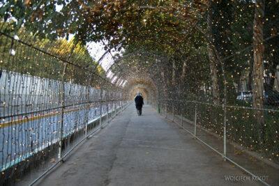 Irnt243-Isfahan-aleja gwiazd