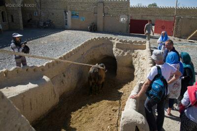 Irnu108-Przy krowiej studni