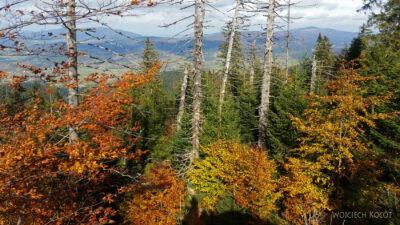 10-Jesień wGorcach