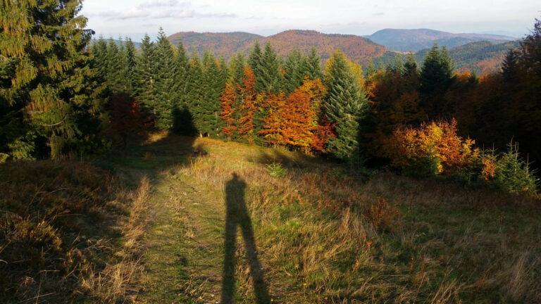 31-Jesień w Gorcach