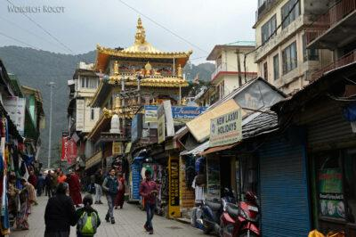 G087-Dharamsala