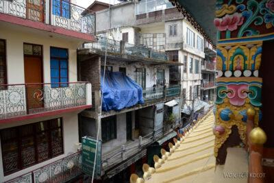 G100-Dharamsala