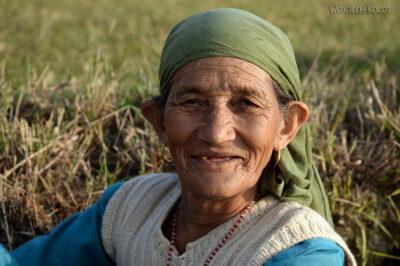 H023-Bir - uprawa ryżu