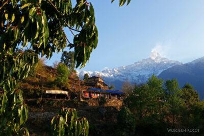 Poh013-Treking naMardi Himal
