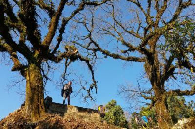 Poh023-Treking naMardi Himal