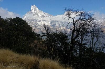 Poh067-Treking naMardi Himal