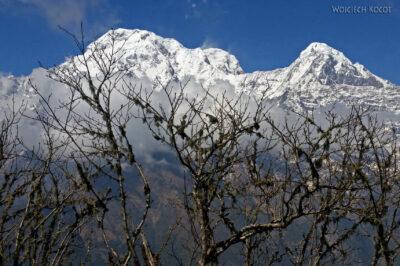 Poh075-Treking naMardi Himal