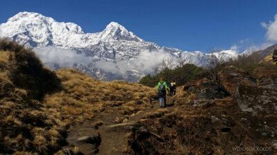 Poh077-Treking naMardi Himal