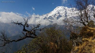 Poh082-Treking naMardi Himal