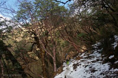 Poh083-Treking naMardi Himal