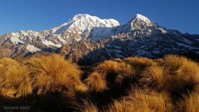 Poi008-Treking naMardi Himal