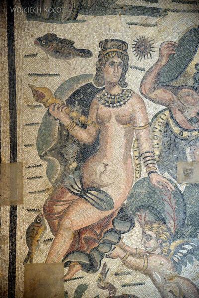 Sye252-W Willa Romana del Casale