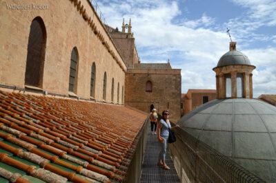 Syj152-Na dachu Katedry wMonreale
