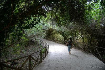 Syn217-Syrakuzy-Park przu Uchu Dionizosa