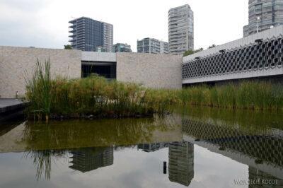 c156-Muzeum Antropologiczne