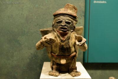 c160-Muzeum Antropologiczne