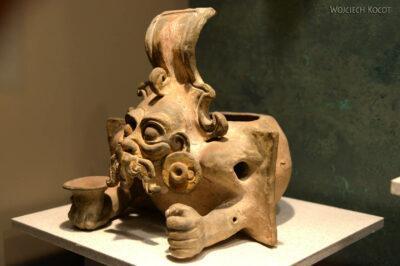 c211-Muzeum Antropologiczne