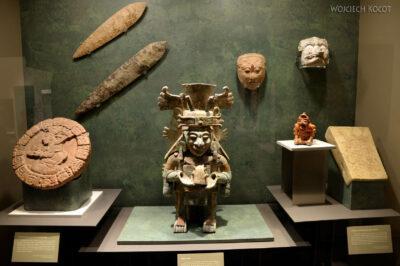 c212-Muzeum Antropologiczne