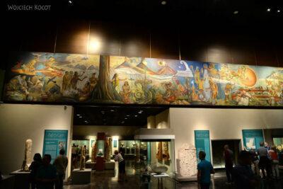 c224-Muzeum Antropologiczne