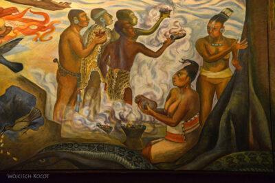 c233-Muzeum Antropologiczne