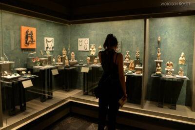 c244-Muzeum Antropologiczne