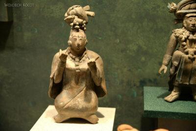 c246-Muzeum Antropologiczne
