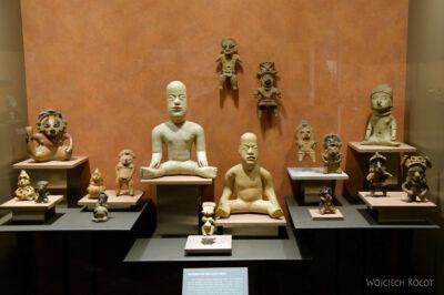 c276-Muzeum Antropologiczne