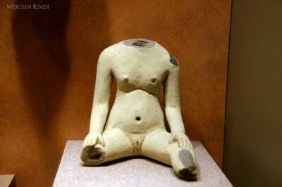 c280-Muzeum Antropologiczne