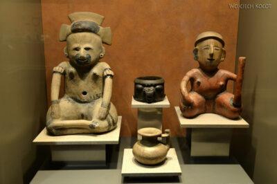 c286-Muzeum Antropologiczne