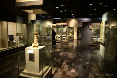 c306-Muzeum Antropologiczne