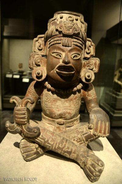 c318-Muzeum Antropologiczne