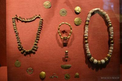 c333-Muzeum Antropologiczne
