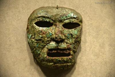 c340-Muzeum Antropologiczne