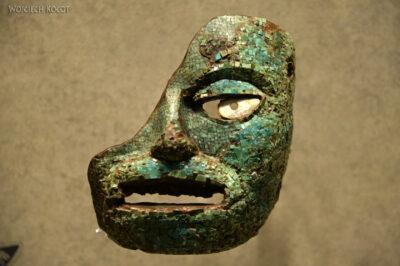 c341-Muzeum Antropologiczne