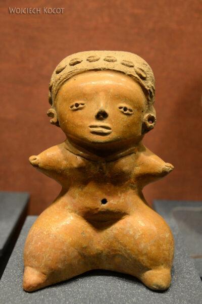 c379-Muzeum Antropologiczne