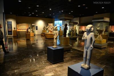 c384-Muzeum Antropologiczne