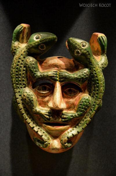 c458-Muzeum Antropologiczne