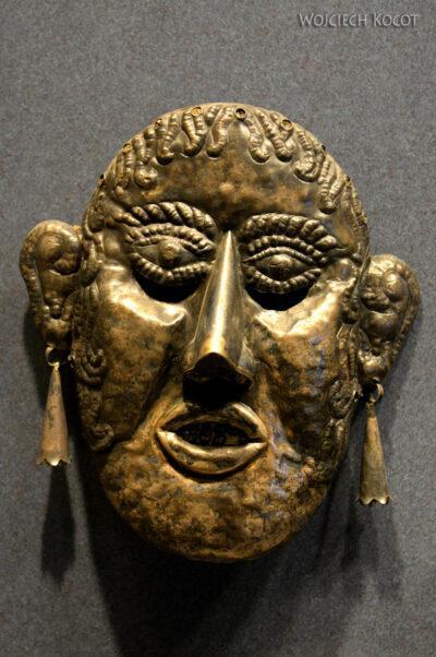 c464-Muzeum Antropologiczne