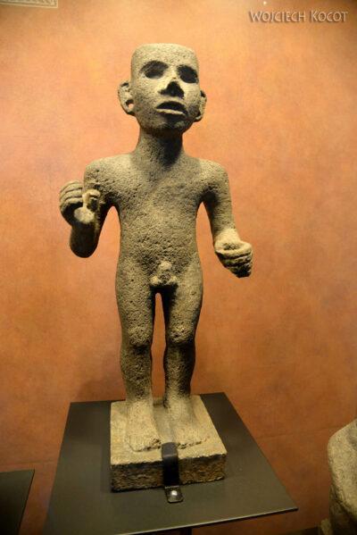 c520-Muzeum Antropologiczne