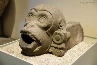 c563-Muzeum Antropologiczne